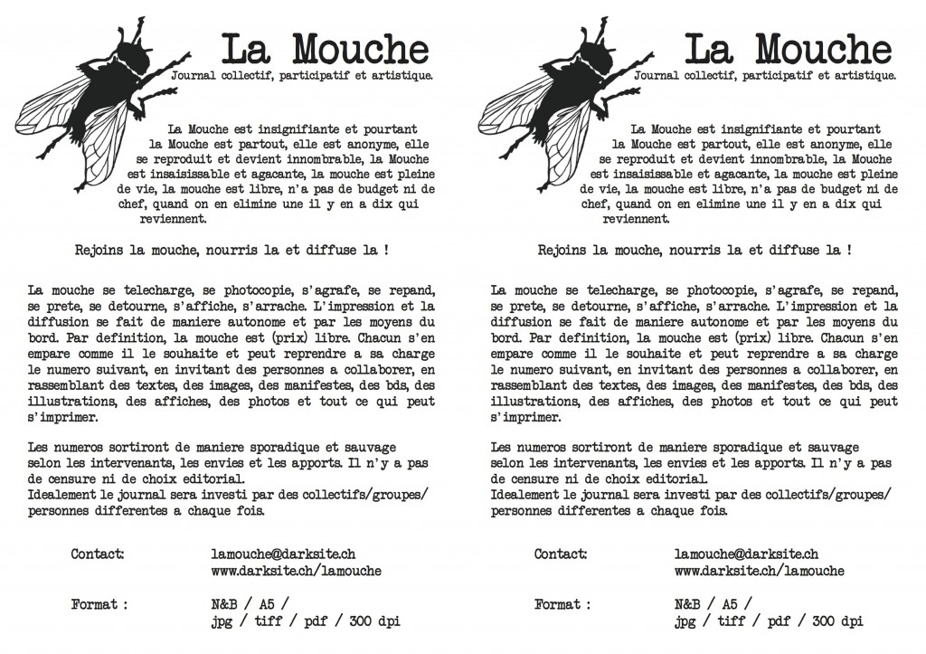 mouche fly